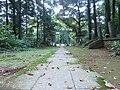 苔むした参道 - panoramio.jpg