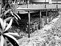 西本願寺輪番所,遺跡(參道、本堂、御廟所)04.jpg