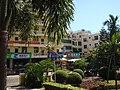 龙海路上的南国特产店 - panoramio.jpg