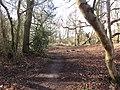 -2021-03-15 A footpath on Crostwight Common (5).JPG