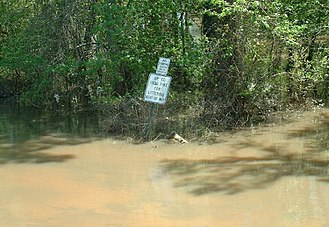 Ochlockonee River - Ochlockonee flooding in Gadsden Co., Florida, near Fairbanks Ferry Road Bridge.