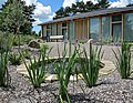 0859 Bristol st peter's hospice open garden day (14594530382).jpg