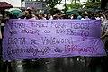 12º Parada LGBT • 13-11-2016 • Niterói (RJ) (30877507981).jpg