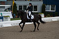 13-04-19-Horses-and-Dreams-2013 (62 von 114).jpg