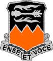 141 Signal Battalion DUI.PNG