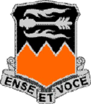 Fess - Image: 141 Signal Battalion DUI