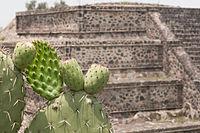 15-07-20-Teotihuacan-by-RalfR-N3S 9428.jpg