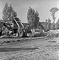 1960 Parc à taureaux du CNRZ-5-cliche Jean-Joseph Weber.jpg