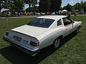 Pontiac Can Am - Image: 1977 Pontiac Can Am with TA 6.6 at 2015 Macungie show 2of 3