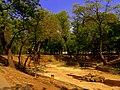 2007 Parcul Kiseleff B-II-a-B-18982.jpg