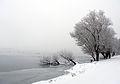 2010-01-03-schnee-im-nebel-by-RalfR-38.jpg