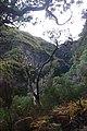 2012-10-27 12-31-31 Pentax JH (49283251998).jpg