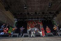 20140706-TFF-Rudolstadt-Parno-Graszt-6348.jpg