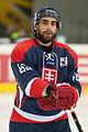 20150207 1800 Ice Hockey AUT SVK 9577.jpg