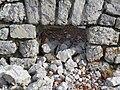2017-11-02 (358) Window of Ruine at Jakobskogel at Rax, Austria.jpg
