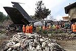 2019 Saha Airlines Boeing 707 crash 05.jpg