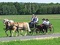 21te Rammenauer Schlossrundfahrt der Pferdegespanne (045).jpg