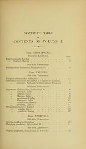 2 Harry Bolus - Orchids of South Africa - volume I (1896) - Index 1.jpg