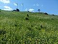 35-211-5004 Казавчинські скелі Лютинська 104.jpg