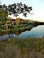 3759. Novokhopyorsk. Khopyor River.jpg