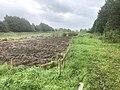 5821 Groen.Westpark.DeHeld.Leegkerk.202009.jpg