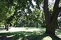 62389 Zbaszyn park miejski.JPG
