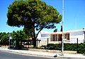 A@a Larnaca cyprus - panoramio (20).jpg