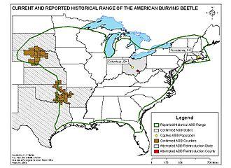 Nicrophorus americanus - Current and historical range of N. americanus.