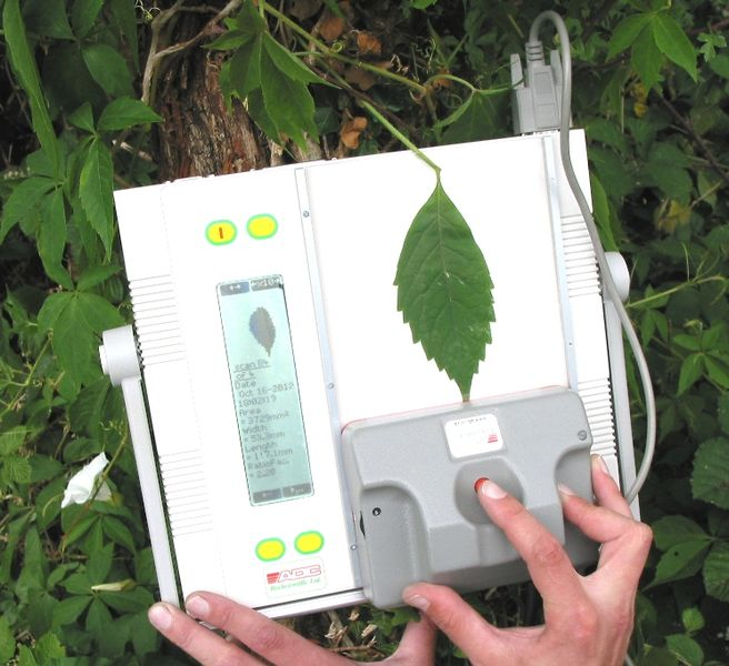 Leaf Area Meter Equipment : File am leafareameter g wikimedia commons