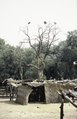ASC Leiden - van Achterberg Collection - 1 - 108 - Un village à environ 60 km de Dori, Burkina Faso. Lieu de pause du bus de Ouagadougou à Dori - Yako, Burkina Faso - 9-29 novembre 1996.tif