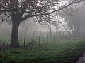 A December view of Woodnook Valley, Little Ponton, Lincolnshire, England 03.JPG