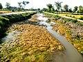 A View Of Kamal Canal (Kamal Wah) - panoramio.jpg