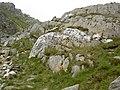 A blaze of quartz near Bwlch Tryfan - geograph.org.uk - 460042.jpg