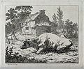 A bull resting in an enclosure outside a thatched cottage. E Wellcome V0020690.jpg