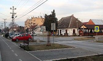 A street in Novi Banovci2.jpg