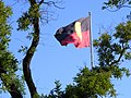 Aboriginal Flag - Victoria Square.jpg