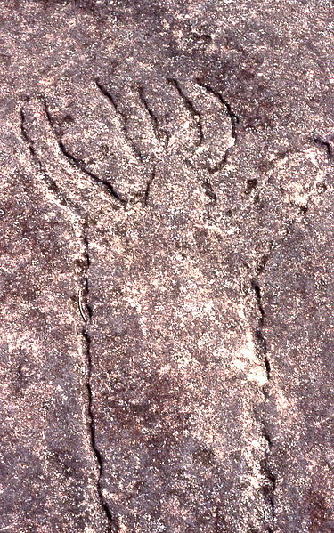 File aboriginal rock carvings terrey hills new south