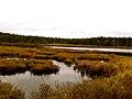 Acadia National Park (8111149300).jpg