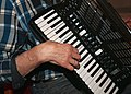 Accordionist trekkspiller trekkspill.jpg