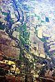 Adel, Iowa aerial 01A.jpg