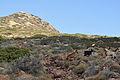 Aegina - view 18.jpg