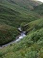 Afon Doethie rapids - geograph.org.uk - 913379.jpg