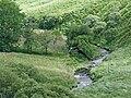 Afon Pysgotwr Fawr, Ceredigion - geograph.org.uk - 508596.jpg