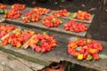 Ajíes picantes en Guinea Ecuatorial.png