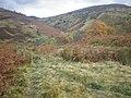 Allt a' Ghlinne joins Calder Burn Below Glenbuck Track - geograph.org.uk - 1036583.jpg