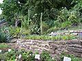 Alter Botanischer Garten der Universität Göttingen 011.jpg