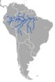 Amazonian Manatee.png
