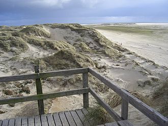 Frisian Islands - Image: Amrum Kniepsand