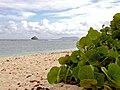 Anse à la Gourde en Guadeloupe.jpg