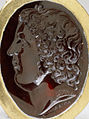 Apollonios of Athens - Ring with Portrait of a Courtier - Walters 571698 crop portrait.jpg